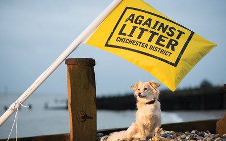 Against Dog Fouling Chichester