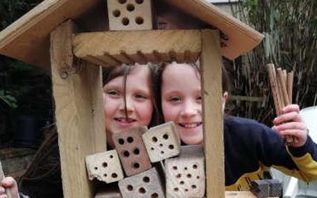 Bird Aware home schooling